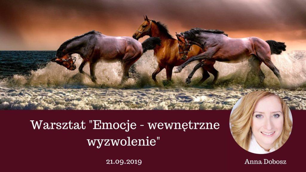 Warsztat - Emocje wewnętrzne wyzwolenie - Anna Dobosz
